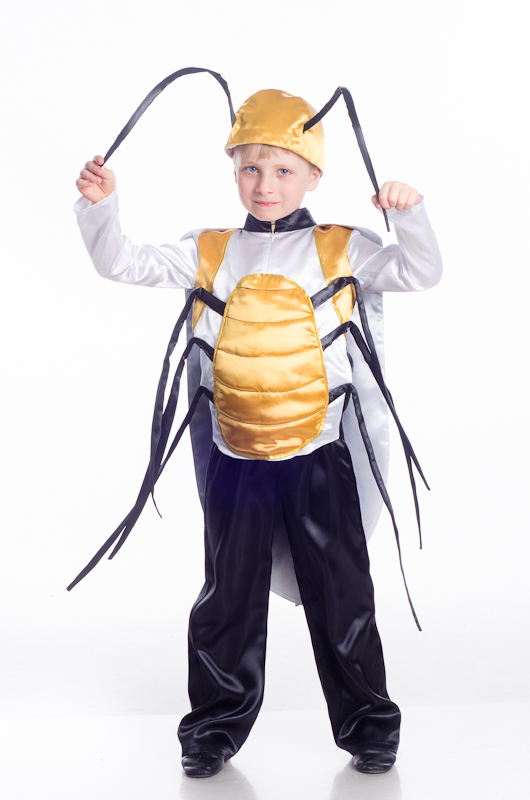 Костюм жука для мальчика своими руками фото